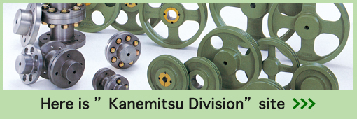 """Here is """"Kanemitsu Division"""" site"""